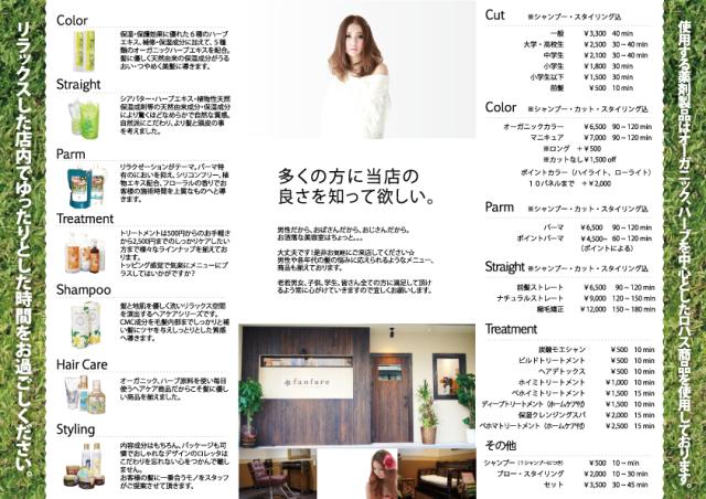 fanfare_design (2)